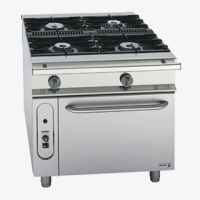 Non Modular Cooking Gas Ranges With Pass Through Oven